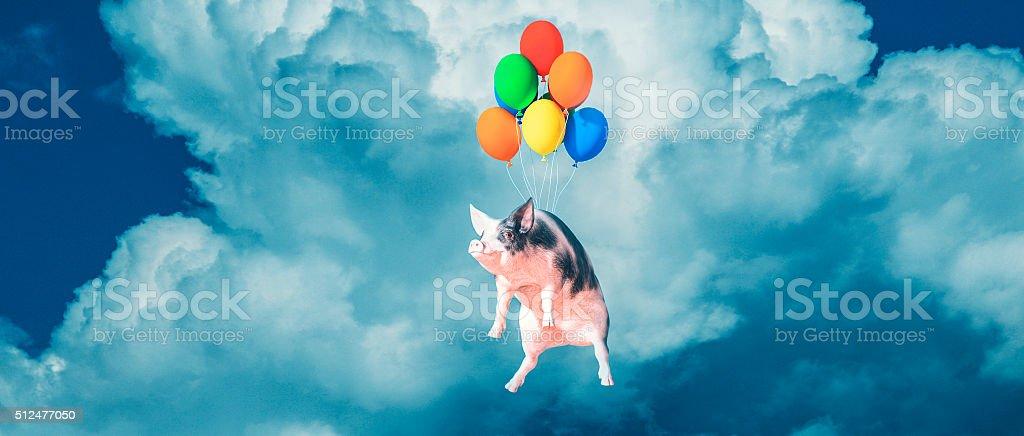 Feliz, sorrindo, voando porco - foto de acervo