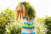 Happy smiling kid boy holding organic carrots outdoors of farm. Boy having fun with  gardening  and helping