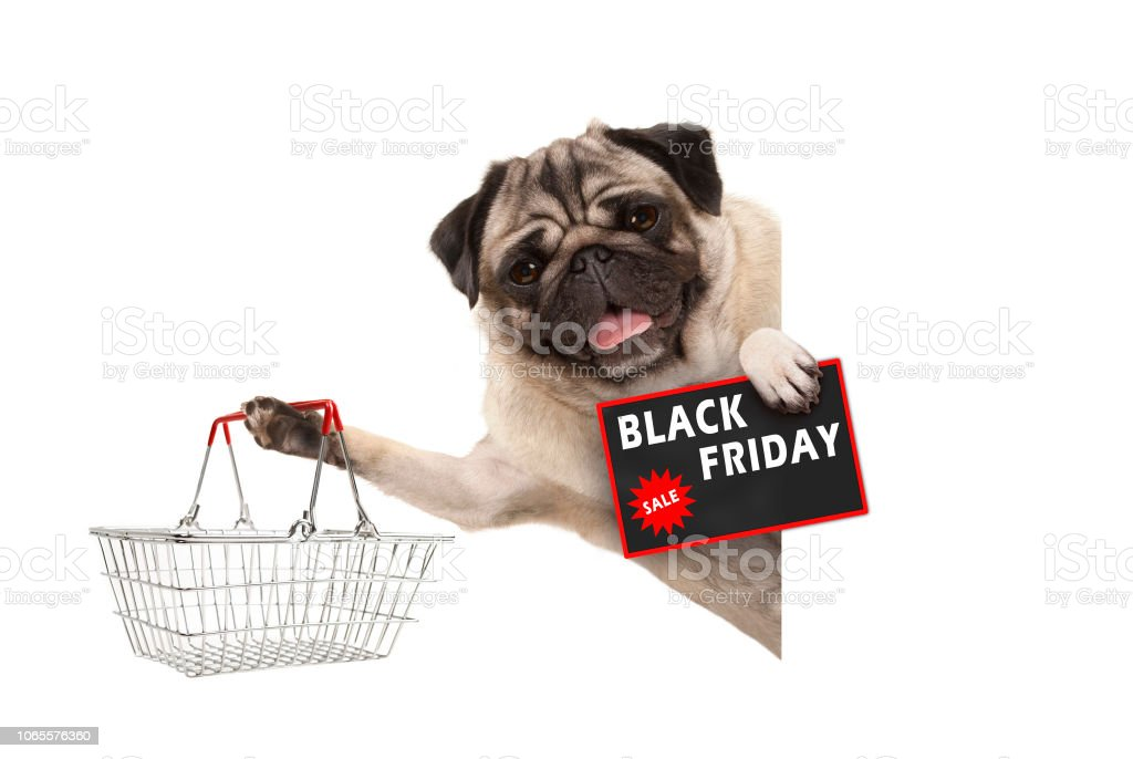 gelukkig lachend pug puppy hondje, met draad metaal winkelmandje en Black Friday koop teken, achter witte spandoek foto