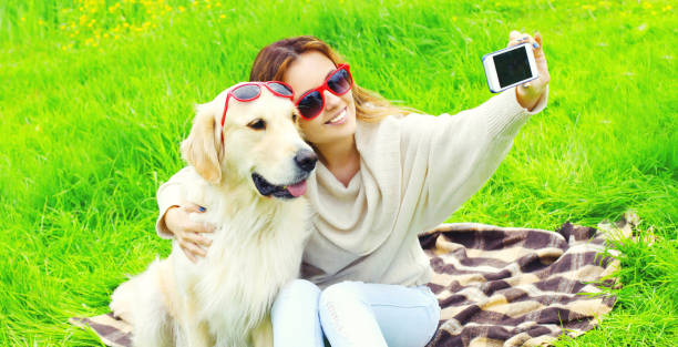 Happy smiling woman with Golden Retriever dog taking selfie picture by phone in summer day stock photo