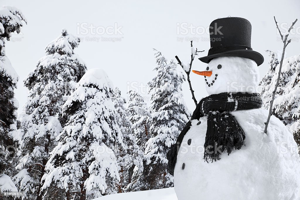 Happy Snowman in Christmas Season - foto de acervo