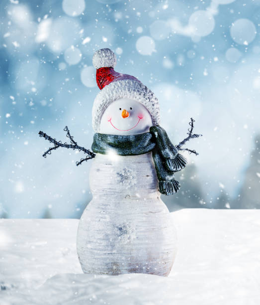 Happy Snowman in Winter Scenery Snowman in winter landscape snowman stock pictures, royalty-free photos & images