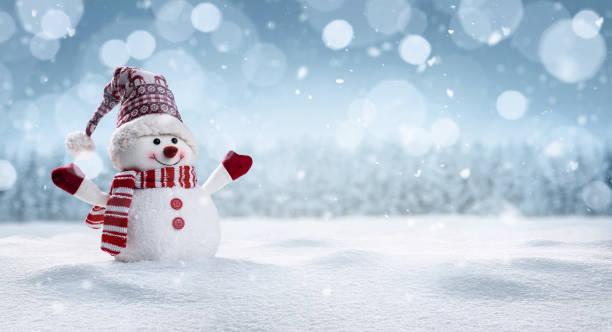 muñeco de nieve feliz en invierno secenery - invierno fotografías e imágenes de stock