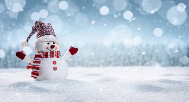 happy snowman in winter secenery - snowflake background stock pictures, royalty-free photos & images
