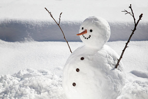 happy snowman - naked santa claus stock pictures, royalty-free photos & images