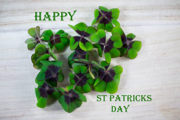 happy st patricks day - happy st. patricks day stock photos and pictures