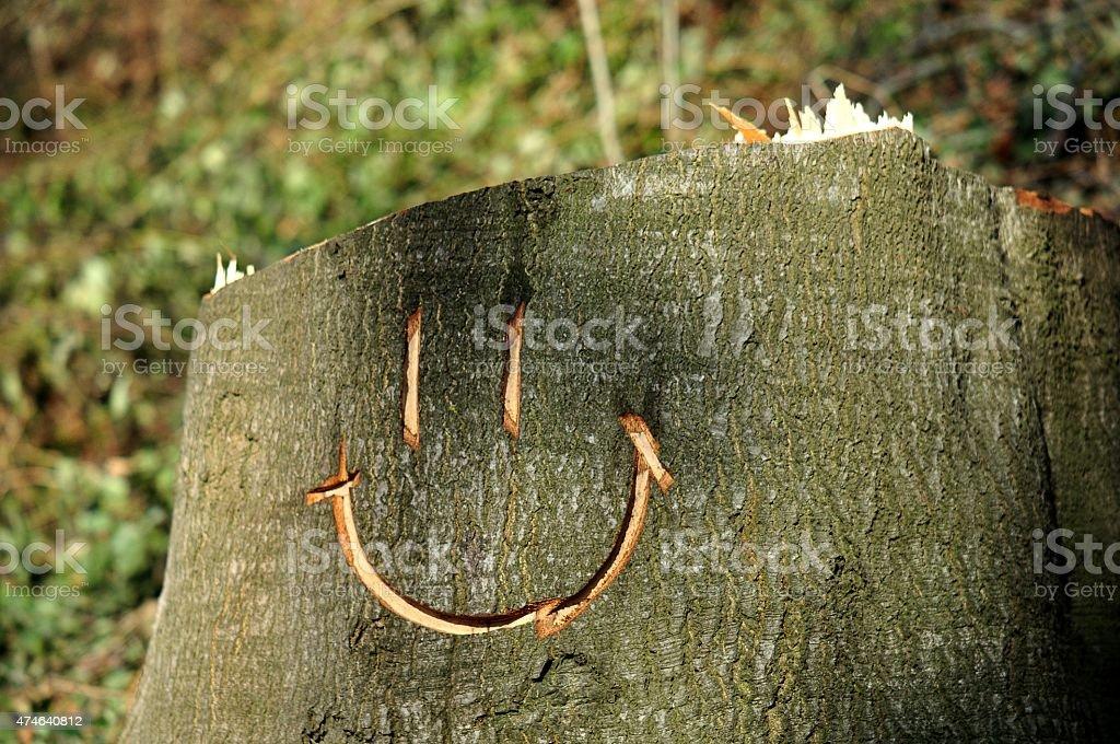 Happy stump stock photo