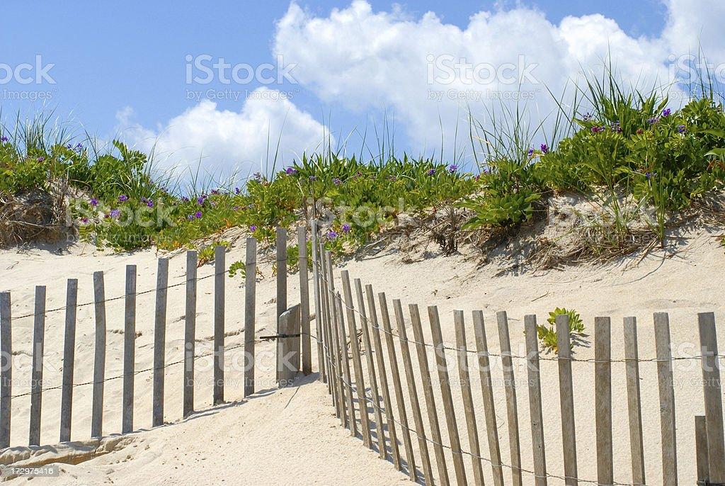 Happy Summer Days at the Hamptons stock photo