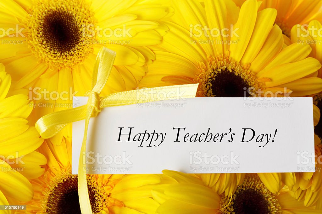 Happy Teachers Day message with gerberas stock photo