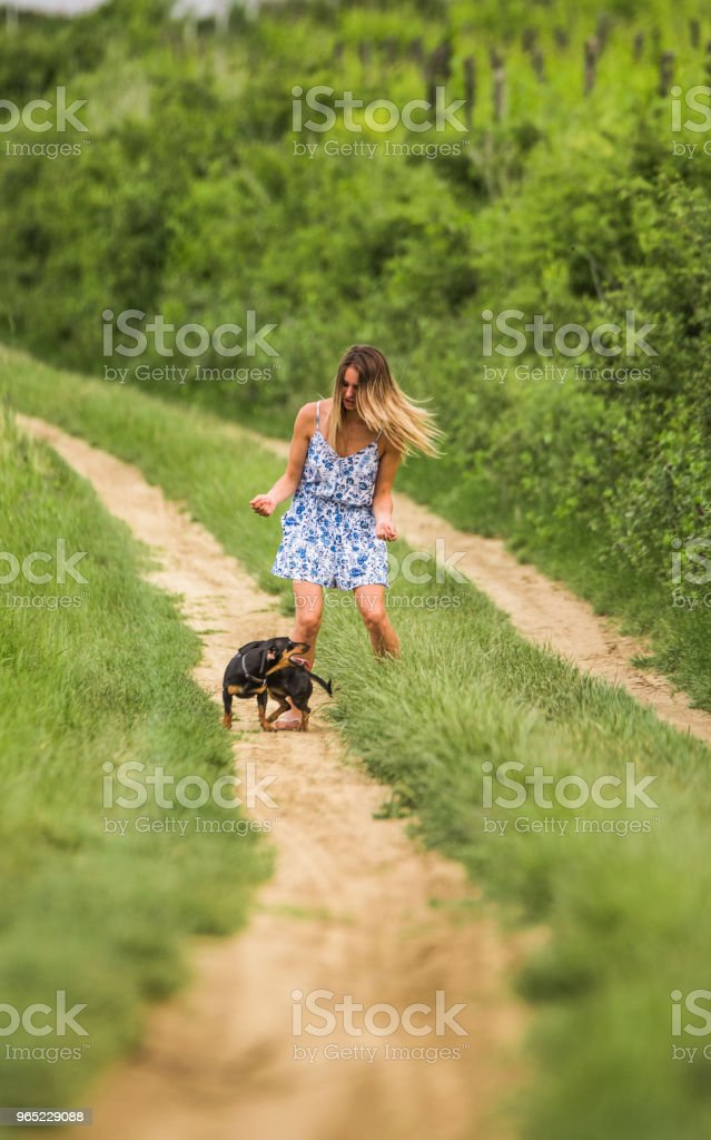 Happy teenage girl playing with her Dachshund dog on a dirt road. royalty-free stock photo