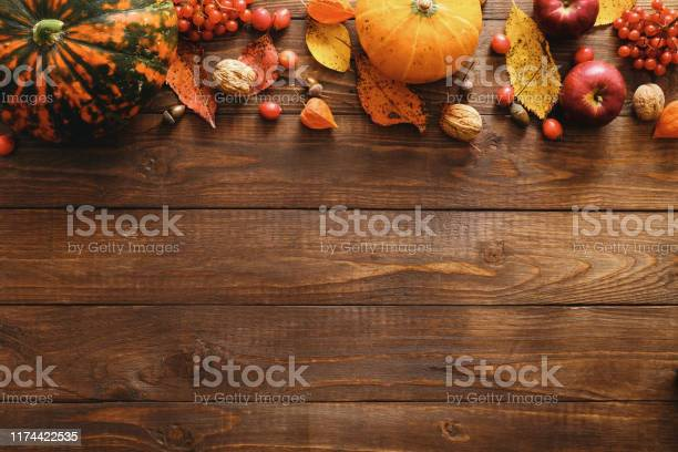 Happy thanksgiving concept autumn composition with ripe orange dry picture id1174422535?b=1&k=6&m=1174422535&s=612x612&h=fypz3ezb8ozeaifenjdu qn01fzwqkooxm pmzuzfaw=