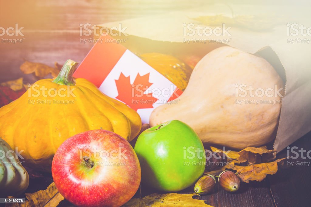 Happy Thanksgiving Day in Canada. Vegetables, pumpkins, squash, apples, maple and oak leaves, acorns on a wooden background. Harvest and yellow autumn leaves on a wooden table. stock photo