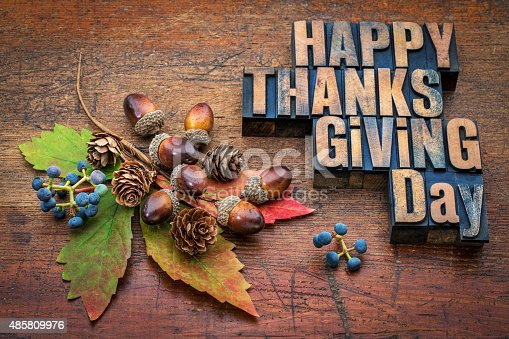 istock Happy Thanksgiving Day in wood type 485809976