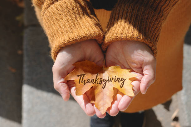 Happy Thanksgiving Day with Maple leave on woman hand and text stock photo