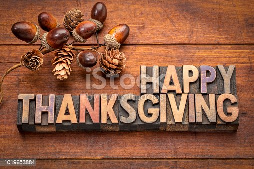 Happy Thanksgiving greeting card - word abstract in vintage letterpress wood type with acorns and cones fall decoration against rustic wood