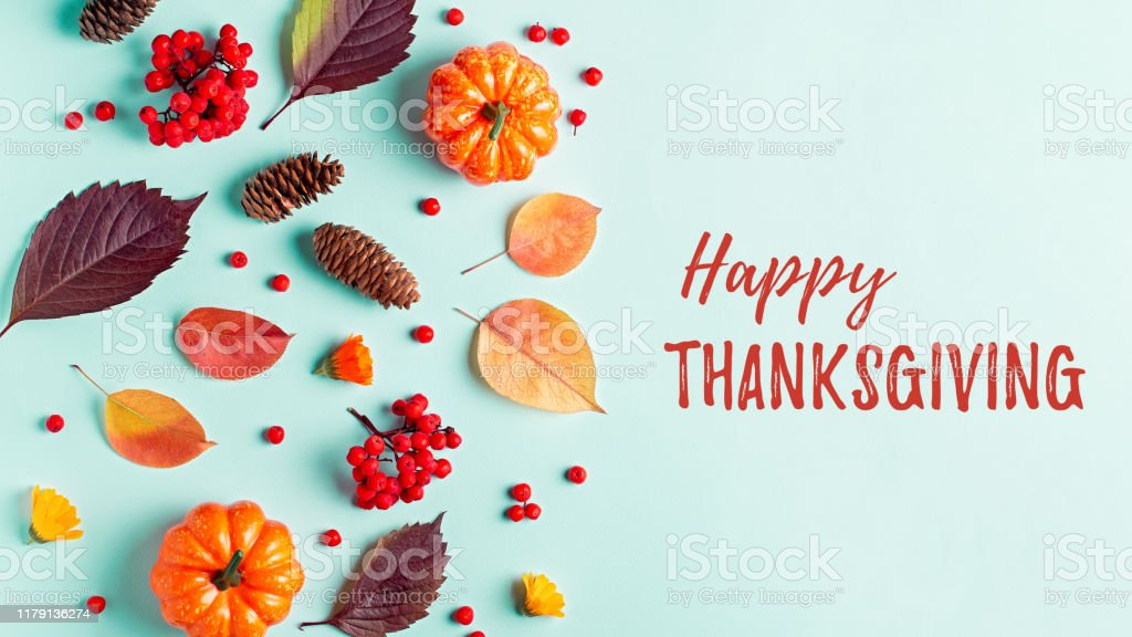 Happy Thanksgiving greeting card with leaves, pumpkins, rowan berries on mint background. Fall, thanksgiving concept. - Zbiór zdjęć royalty-free (Bez ludzi)