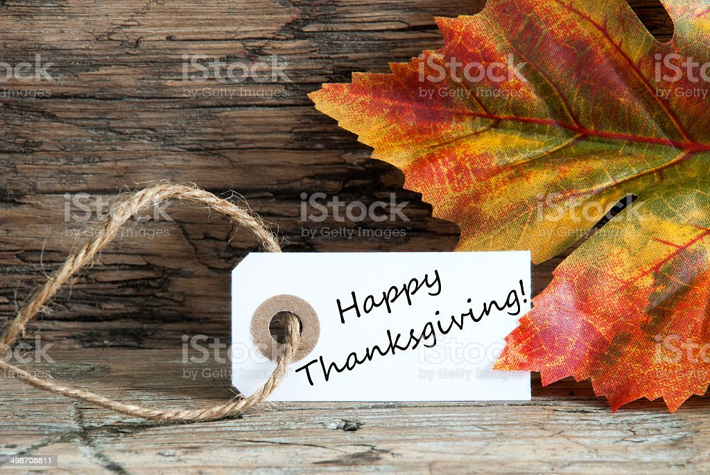 Happy Thanksgiving with Autumn Background royalty-free stock photo
