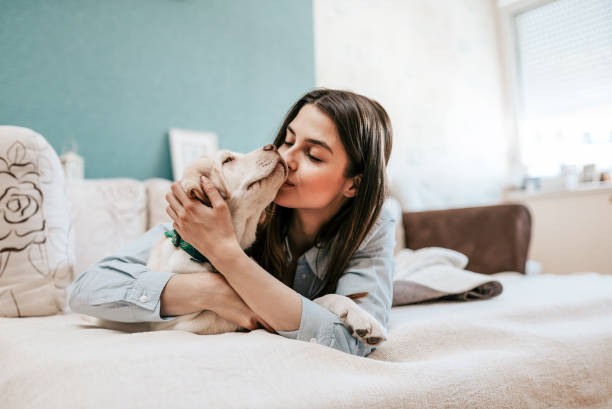 Happy time with pet. stock photo