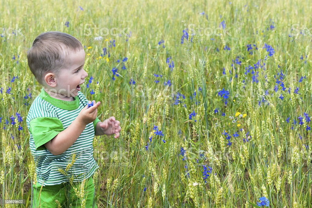 Happy toddler in the field royalty-free stock photo