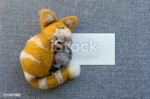 A sleeping, happy tomcat holds a mouse in his arms