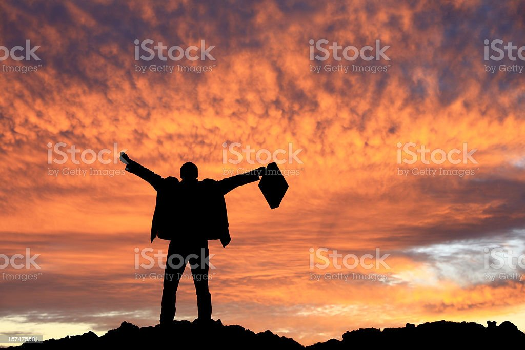 Happy Unrecognizable Businessman With Briefcase royalty-free stock photo
