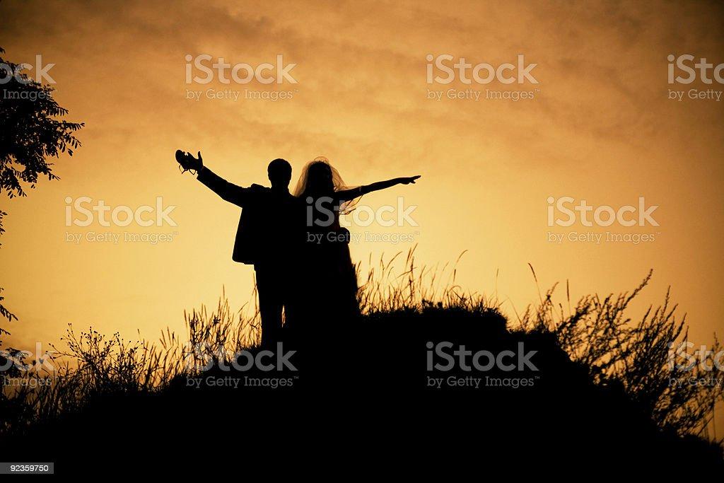 Happy wedding royalty-free stock photo