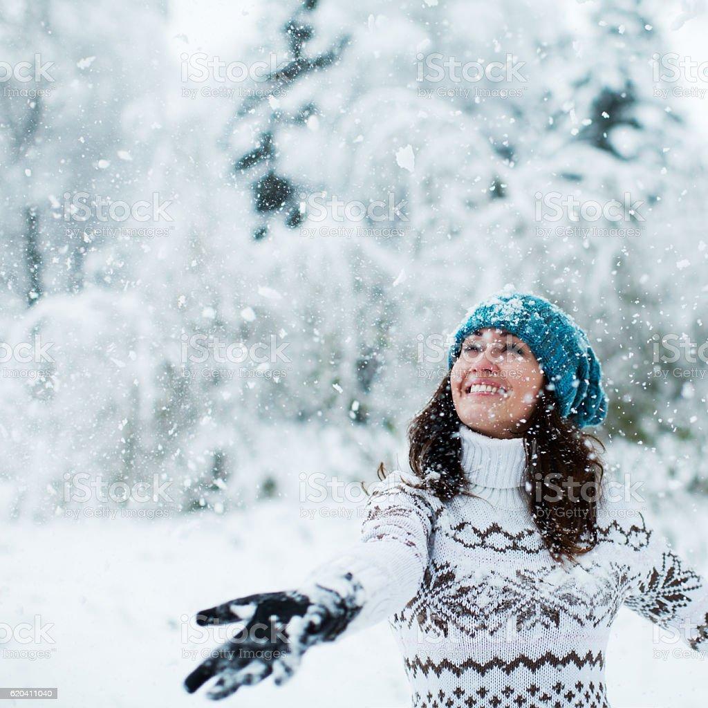 Happy winter holiday stock photo