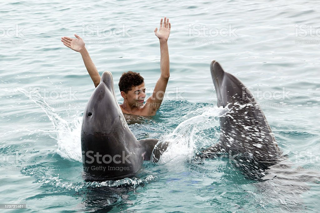 Happy with the dolphins stock photo