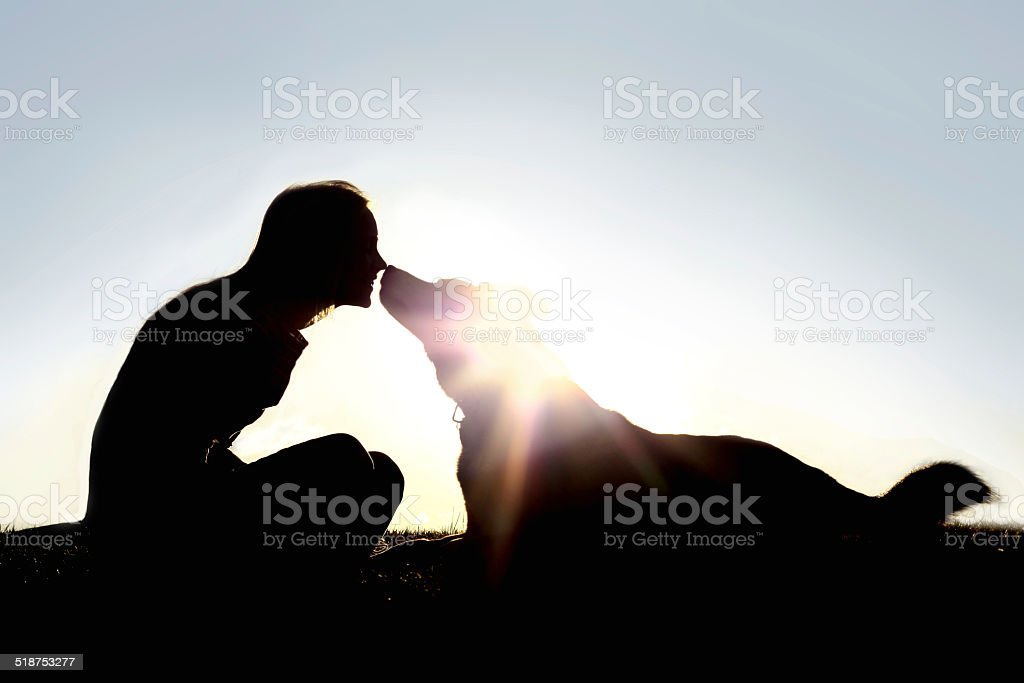 Happy Woman and Dog Outside Silhouette stock photo