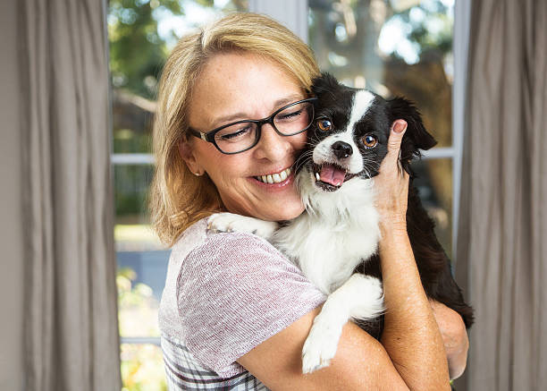 Happy Woman and Little Dog in House stock photo