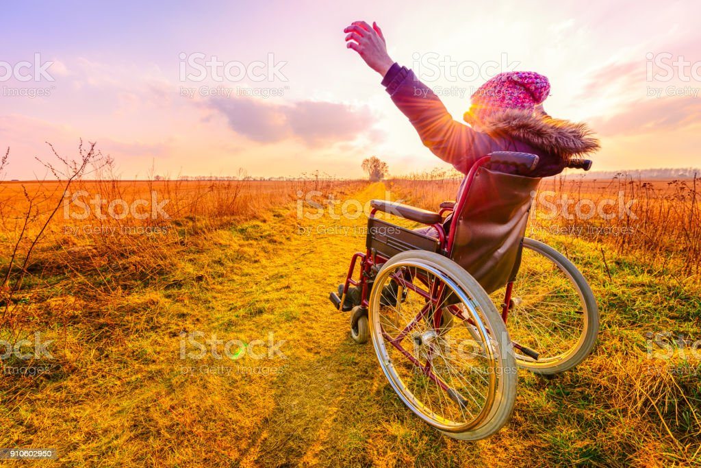 Happy woman at sunset. A young girl in a wheelchair - back view stock photo