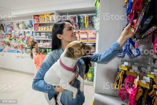 Glückliche Frau Eine Leine In Einer Tierhandlung Kaufen Stockfoto und mehr Bilder von Adoption eines Haustiers
