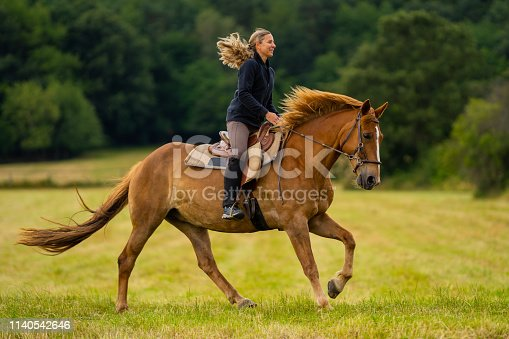 side view smiling woman riding her beautiful chestnut horse over meadow in rural landscape