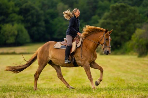 彼女の馬とギャロッピングを楽しんで幸せな女性 - 乗馬 ストックフォトと画像
