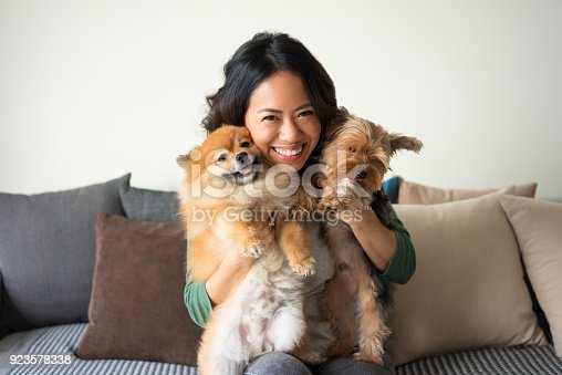 istock Happy Woman Holding Yorkie and Spitz Dogs on Sofa 923578338