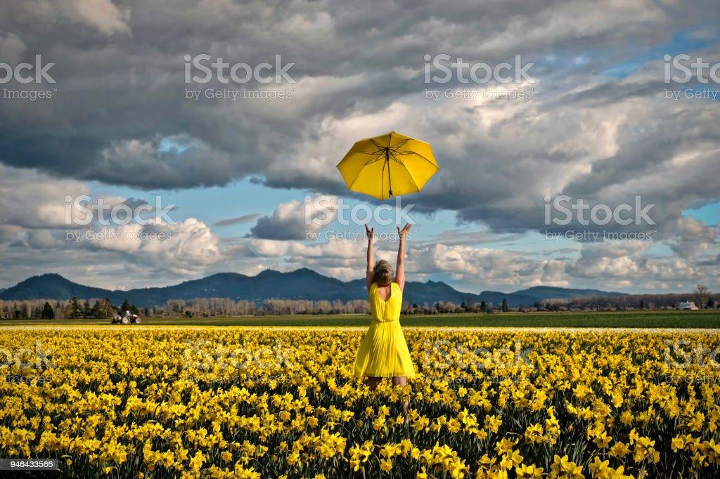 Glückliche Frau Narzissen Feld mit gelben Regenschirm – Foto
