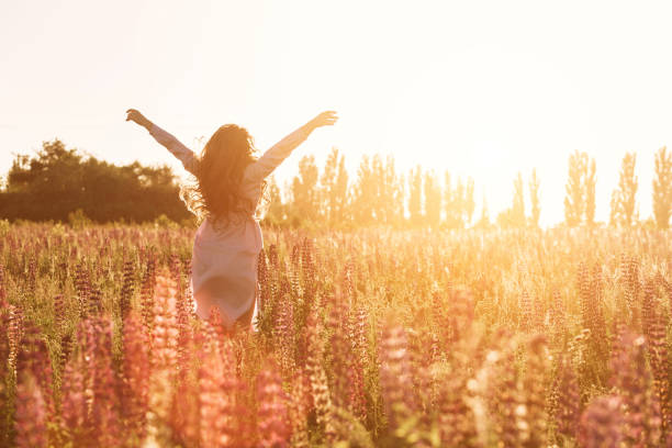 Happy woman in green flower field raised hands to sky. Warm soft sunset light stock photo