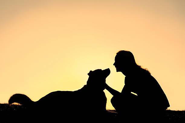 Happy woman petting german shepherd dog silhouette picture id490696479?b=1&k=6&m=490696479&s=612x612&w=0&h=wqlnpuecd q3ccjcjm8oljhgnspdnfigzfmwrsutprs=