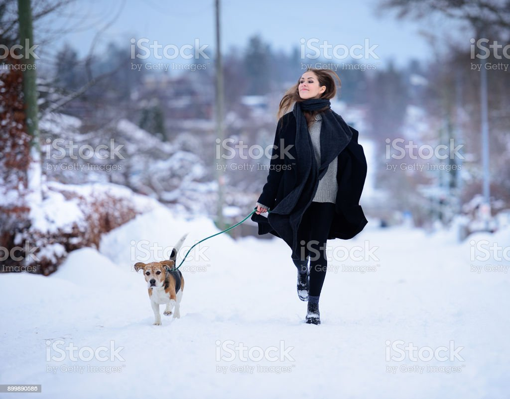 Happy woman running with beagle dog on winter street - foto stock