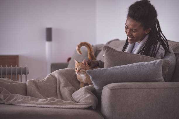 Happy woman stroking a ginger cat, resting on the sofa at home. stock photo