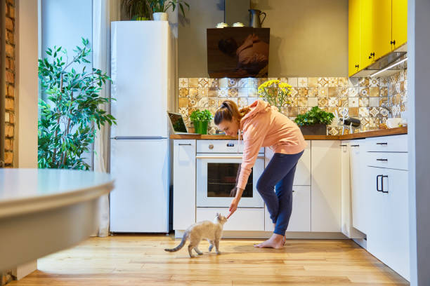 Happy woman stroking her charming cat while standing in her kitchen picture id881433924?b=1&k=6&m=881433924&s=612x612&w=0&h=dwctho580pbbprtvgbj7wwwi1mq8o4zjqpkgio2li u=