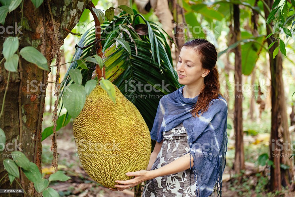 Happy woman tourist on fruit plantation stock photo