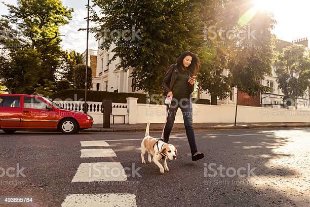 Happy woman walking with dog in early sunday morning picture id493855784?b=1&k=6&m=493855784&s=612x612&h=ei36jtxzgxytltcuipaizoweizomzrkgudnynlu ypq=