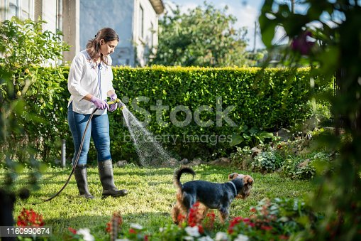 Young Latino woman together with her dog watering garden with water hose, side view