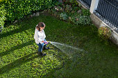 Aerial view of Latino woman watering garden with water hose.