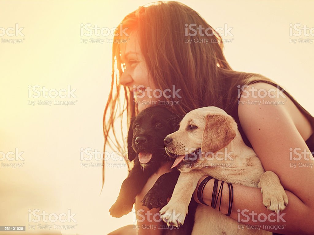 Happy woman with a two puppies in her arms stock photo