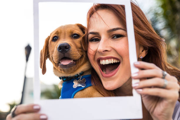 Happy woman with his Labrador puppy in Miami Beach. stock photo