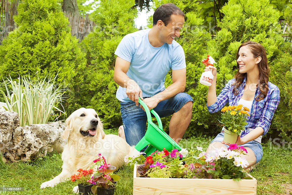 Happy Young Couple Planting Flowers Together. royalty-free stock photo