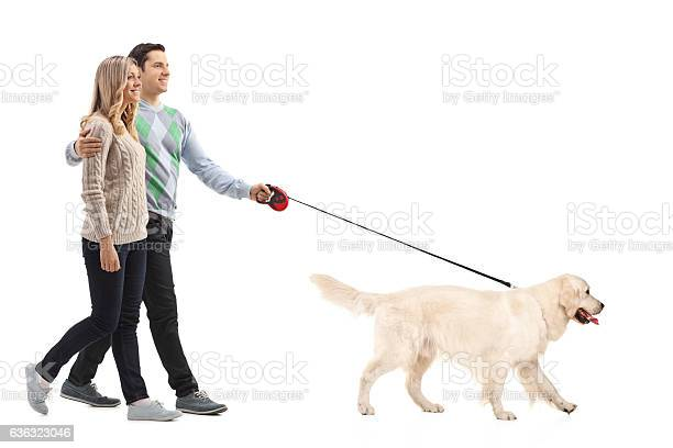 Happy young couple walking a dog picture id636323046?b=1&k=6&m=636323046&s=612x612&h=ayplnvhflwv835h lh8ohsiu tomucnyv3tdev c7pw=