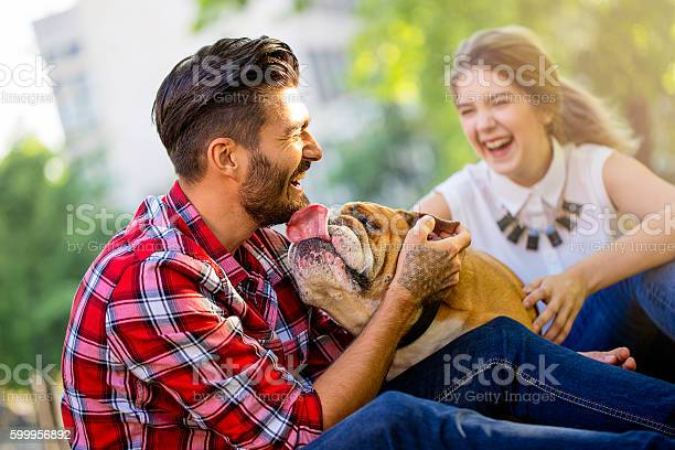 Happy young couple with dog in the park picture id599956892?b=1&k=6&m=599956892&s=612x612&h=8ufciclatwu6rkhr5qrocc zjqxby4rj3wdvohdcn0w=